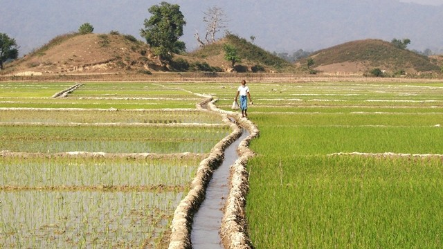 23 septembre: Séminaire«Efficience économique de l'usage de l'eau agricole par les agricultures familiales»