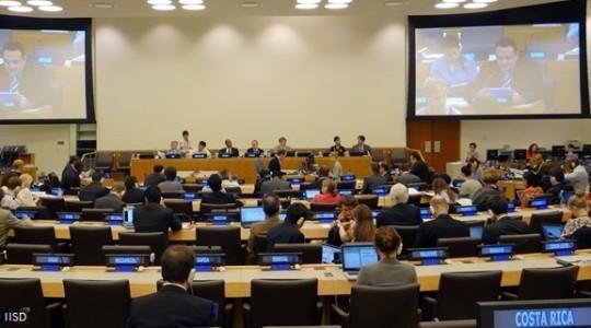 Ouverture de la 13ème session de l'Open Working Group (Copyright IISD)