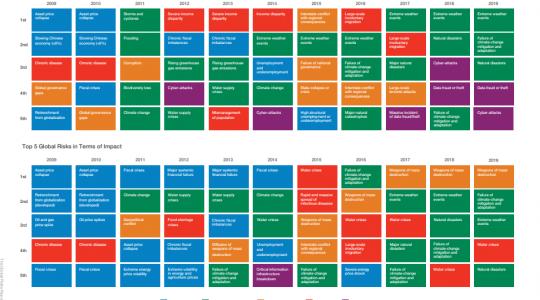 Rapport Mondial des Risques 2019